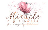 Miracle Big Flowers